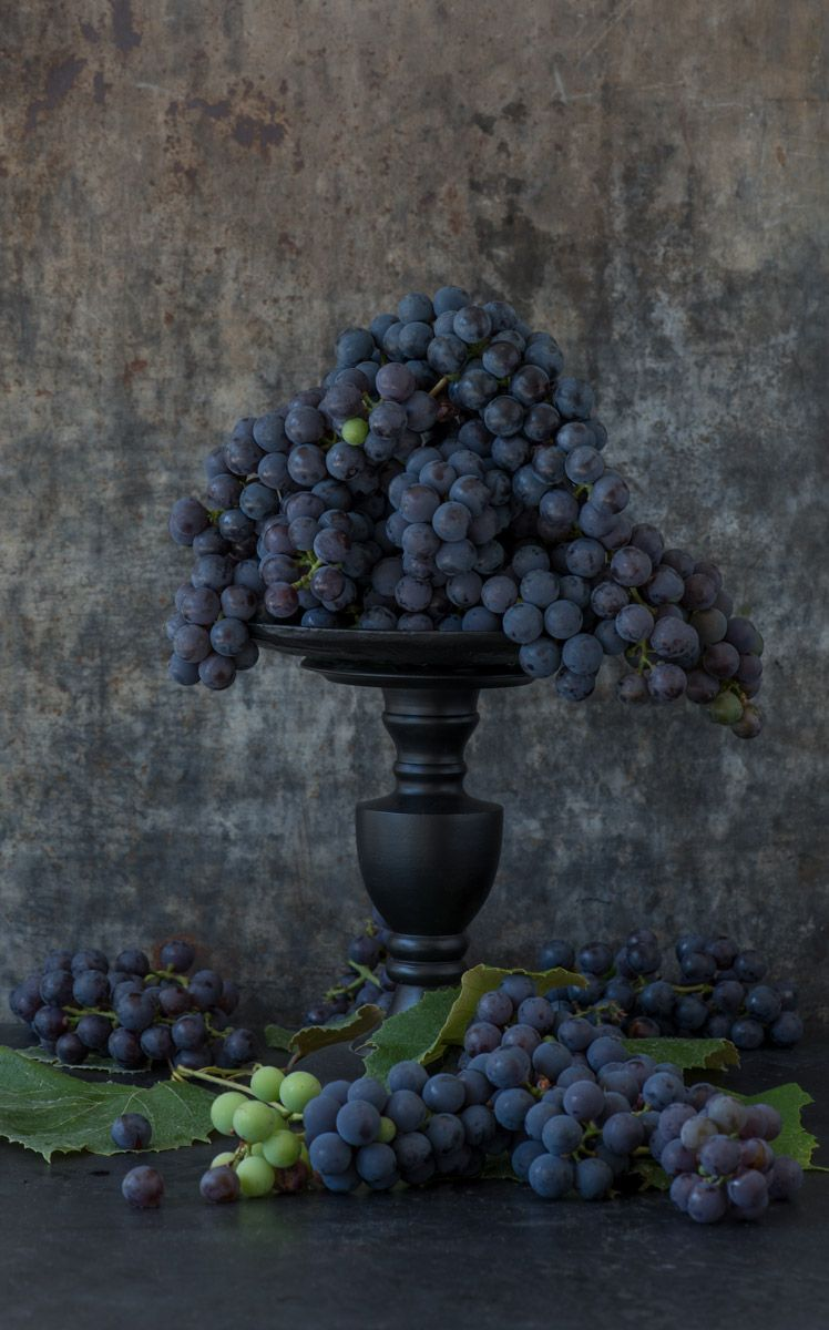 Lynn Karlin_Concord Grapes-8.jpg