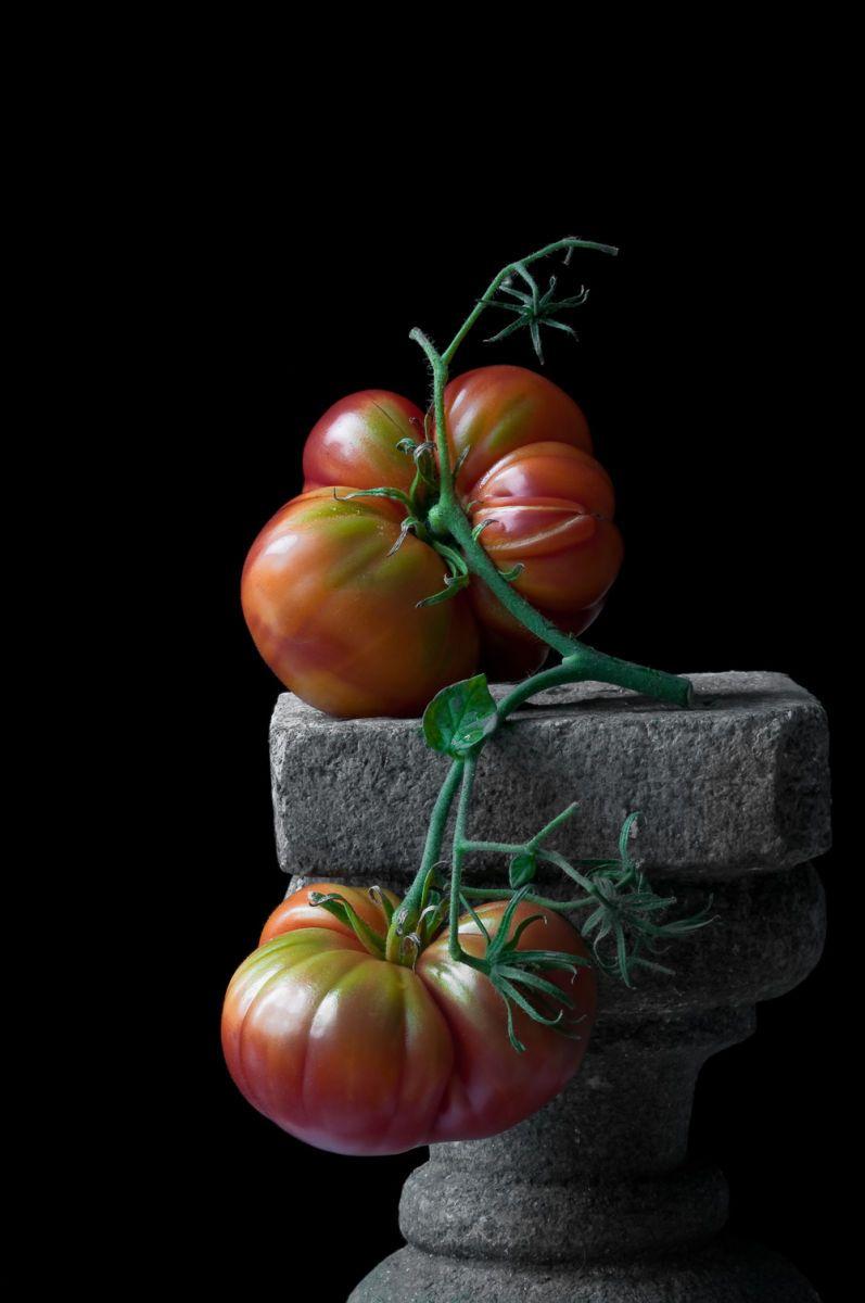 Heirloom Tomatoes, 2010