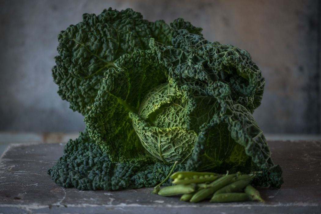 Lynn Karlin_Savoy Cabbage and Peas-7.jpg