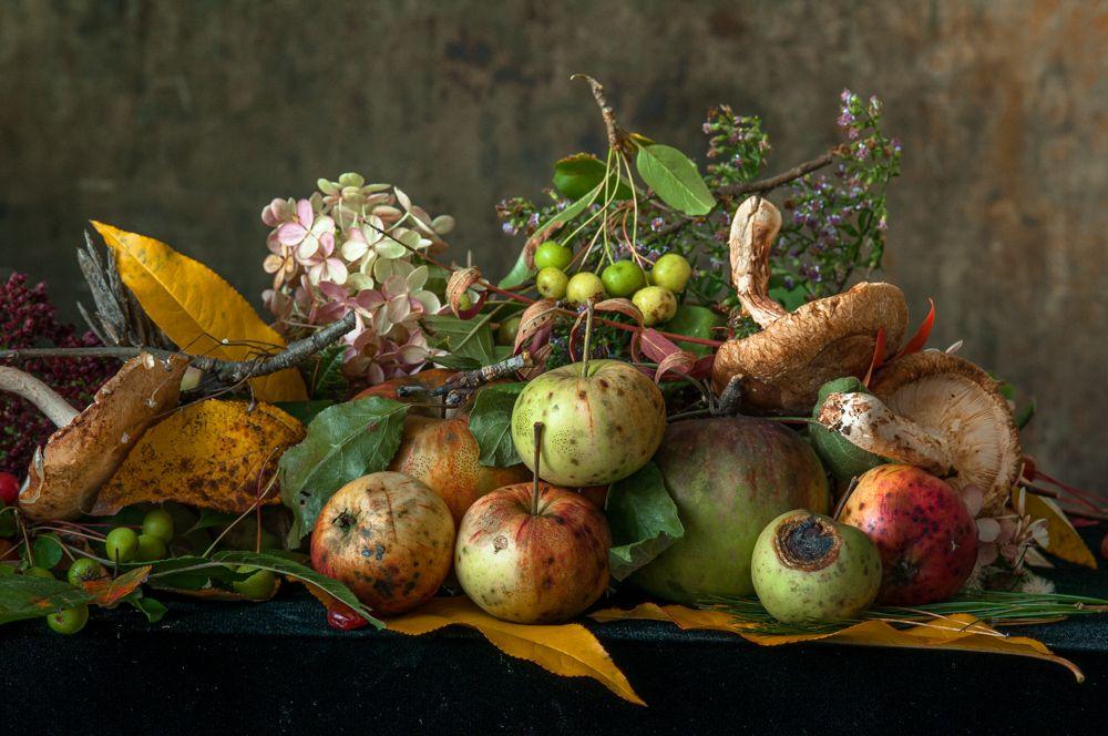 Lynn Karlin_Windfall Apples.jpg