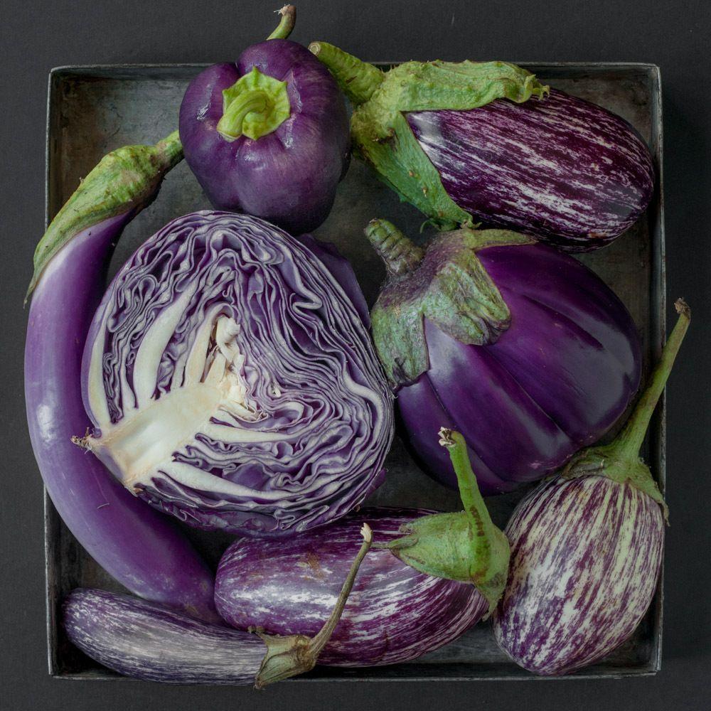 1photo_by_lynn_karlin_eggplant_1.jpg