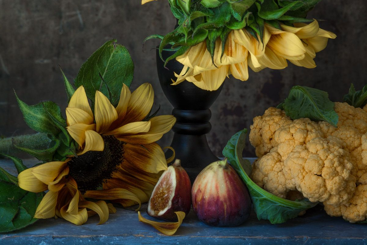 1karlin_sunflower_still_life_10.jpg