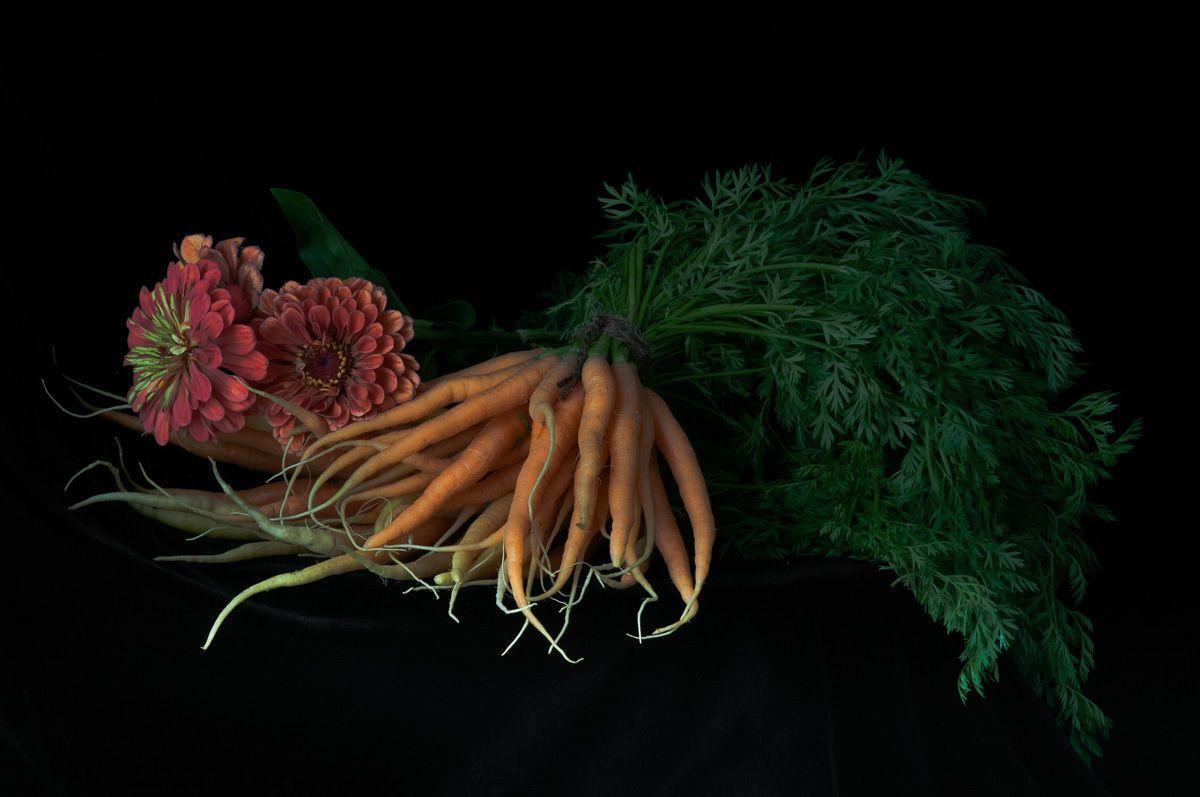 1lynn_karlin_zinnias___carrots.jpg