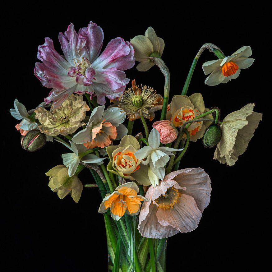 Lynn Karlin_Bouquet of Bulbs.jpg