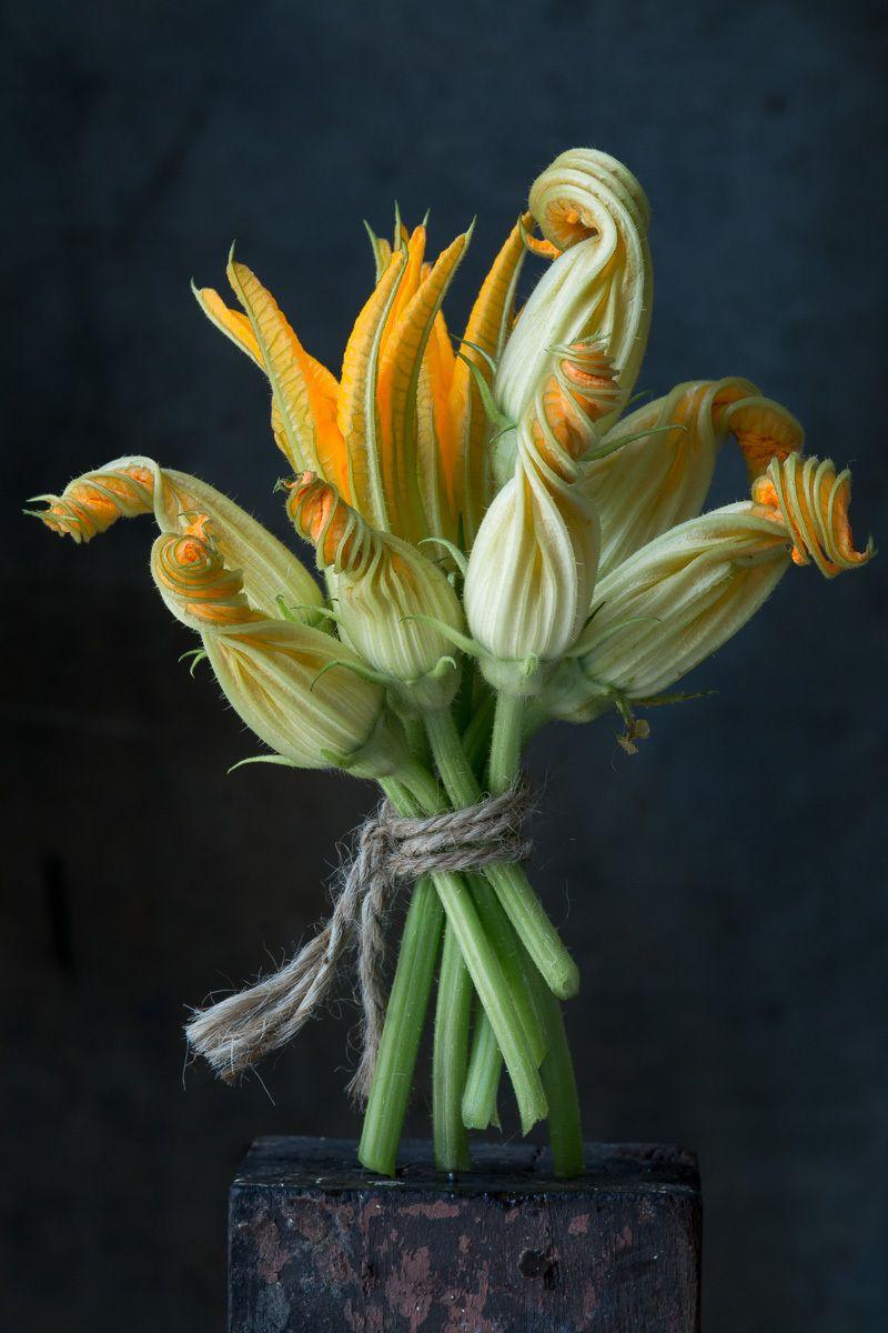 11-karlin__squash_blossoms_7.jpg