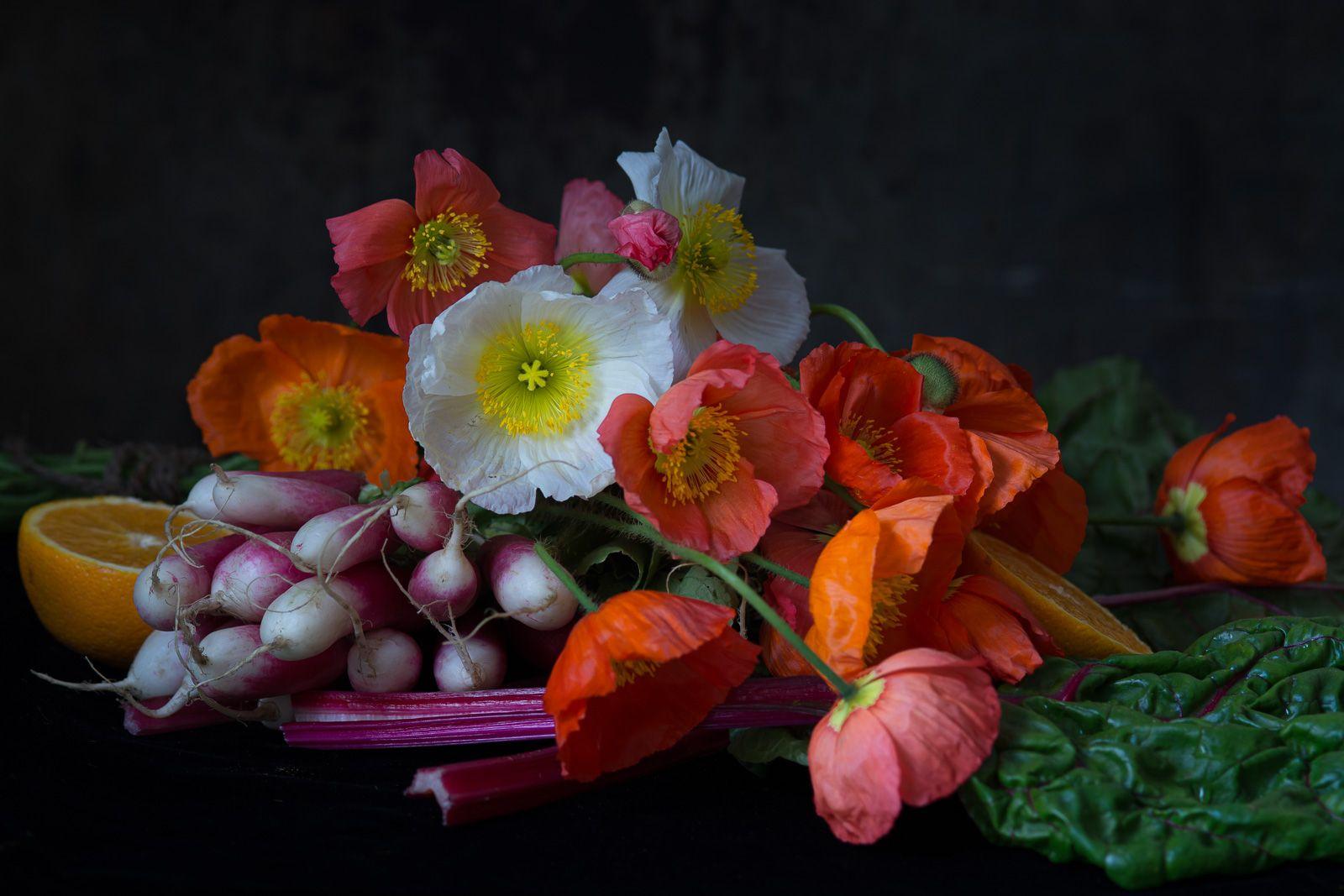 Lynn Karlin_Still Life with Poppies & Radishes.jpg