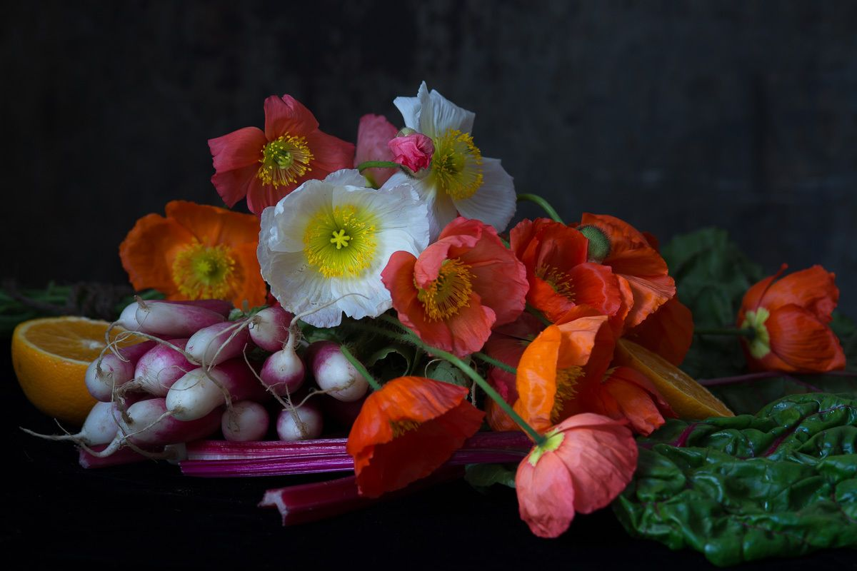 1karlin_poppies___radishes_23.jpg