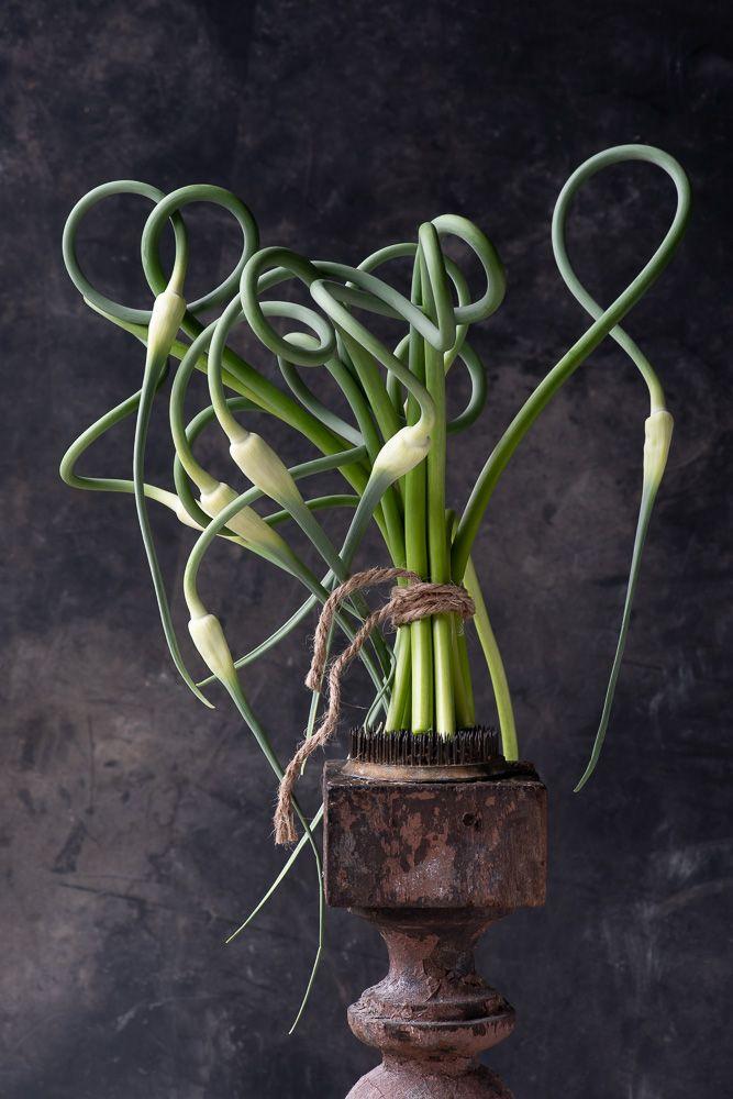 Lynn Karlin_Garlic Scape Bouquets-32.jpg