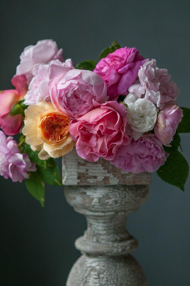 Lynn Karlin_ Roses on Pedestal.jpg
