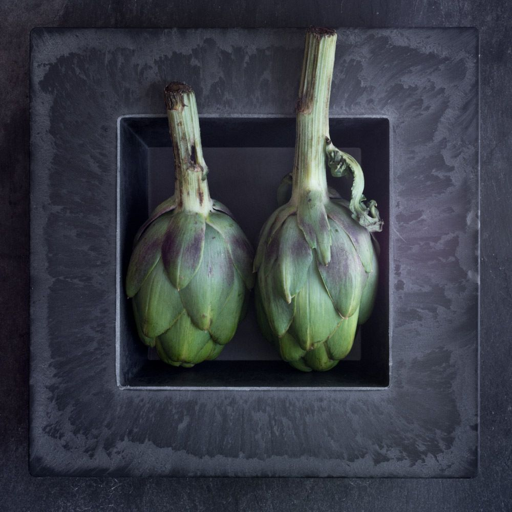 1photo_by_lynn_karlin_2_eggplants.jpg