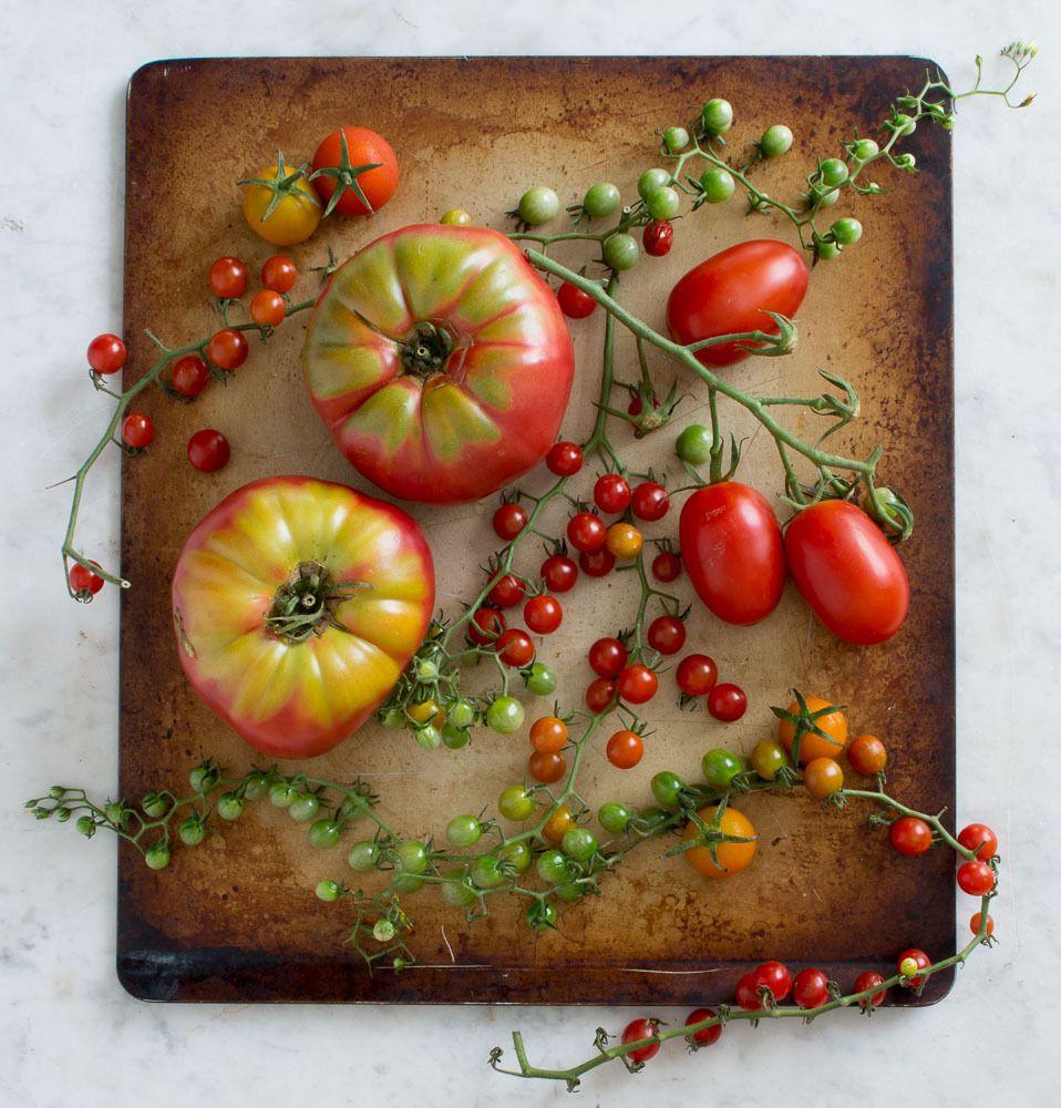 1karlin_tomato_tray_3.jpg