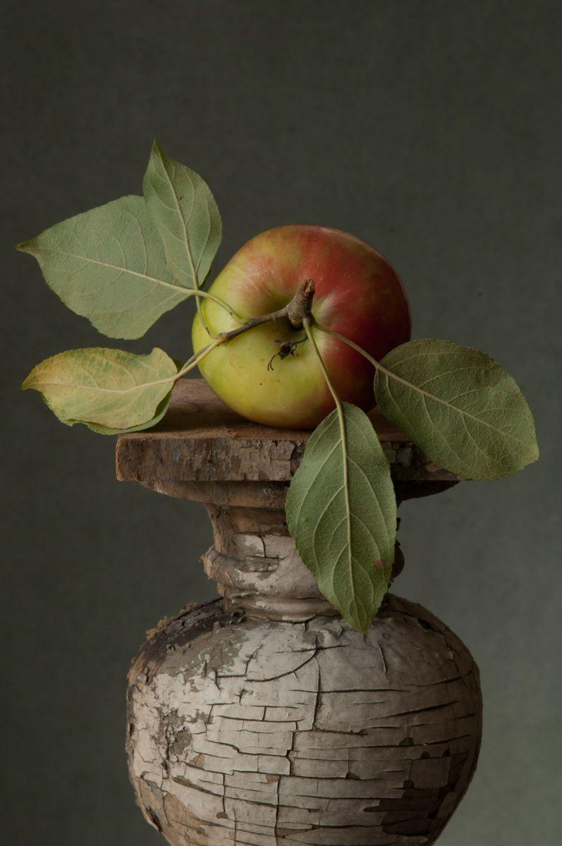 """""""Heirloom Apple #2"""", 2013"""