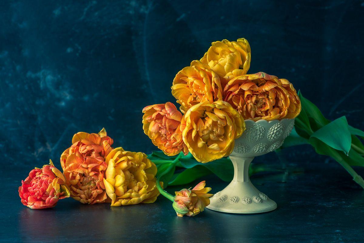 Lynn Karlin_'Sunlover' Tulips.jpg