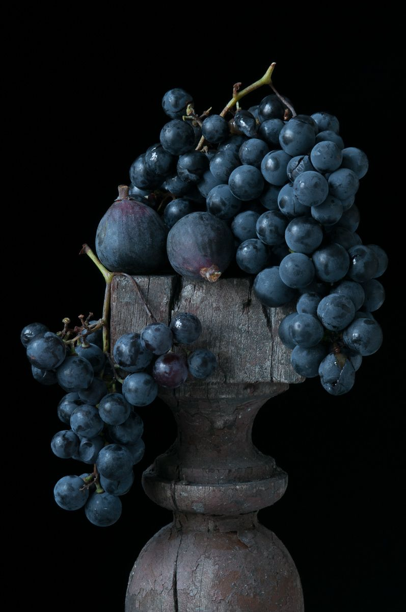 """""""Concord Grapes & Figs"""", 2013"""