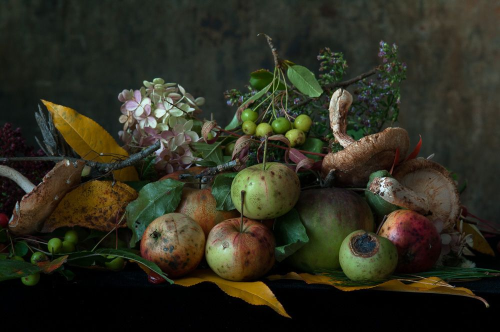 1karlin_autumn_still_life_web.jpg