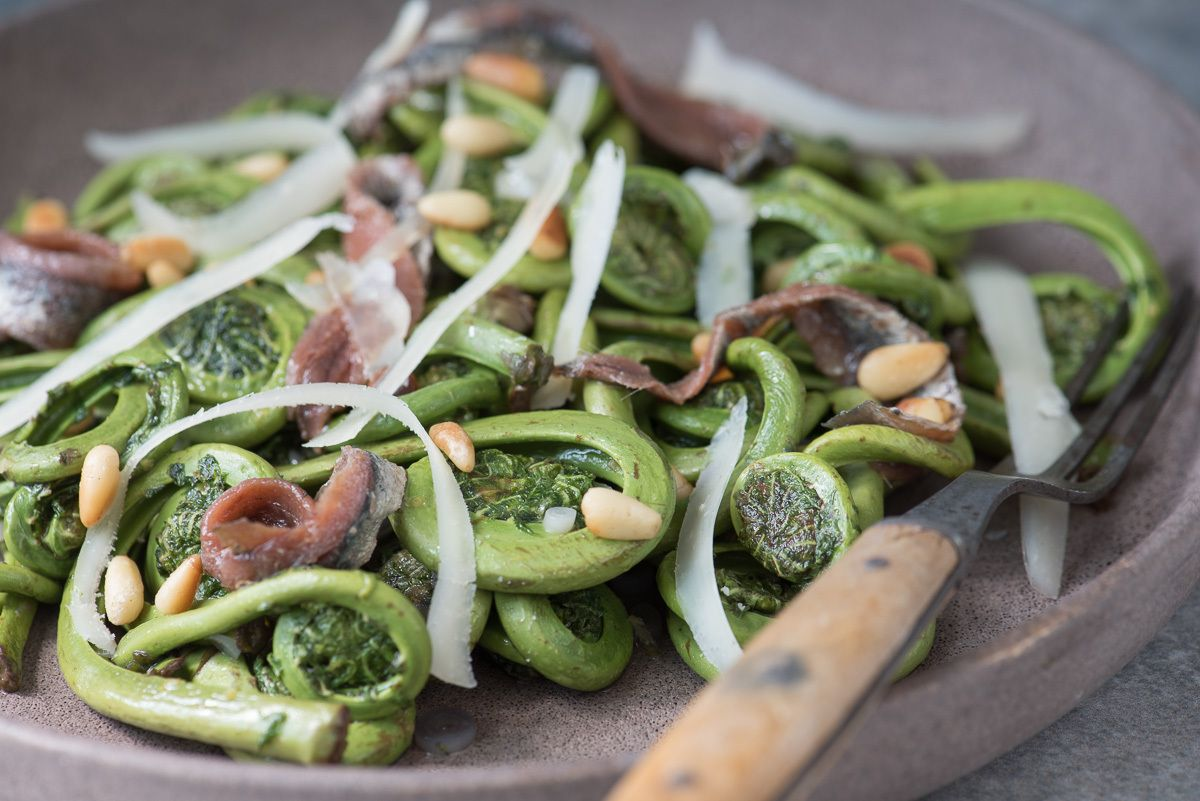 11-maine_fiddleheads_photo_lynn_karlin_9.jpg