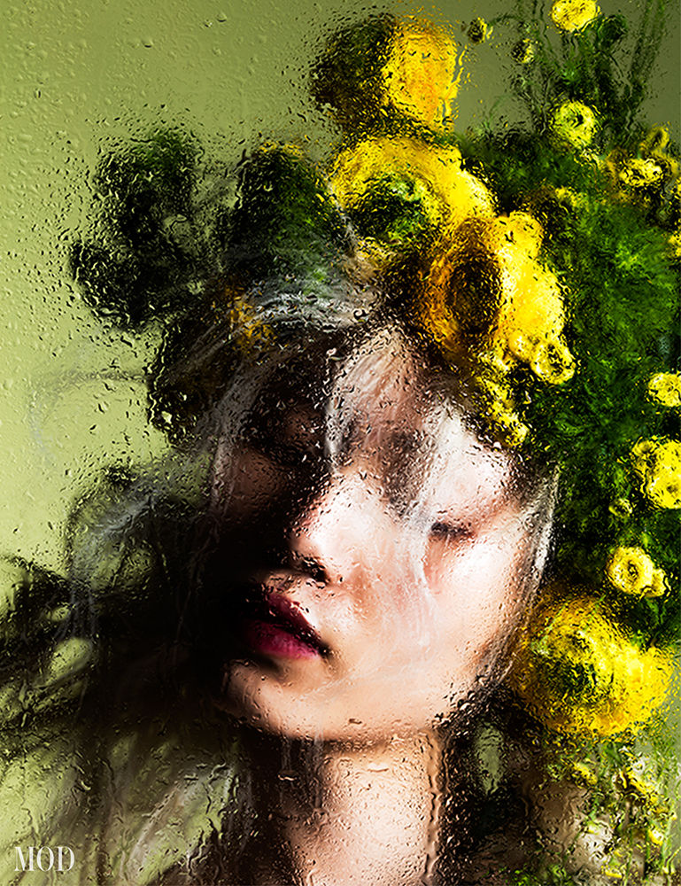 FINE ART - FLORAL BEAUTY - MOD MAGAZINE