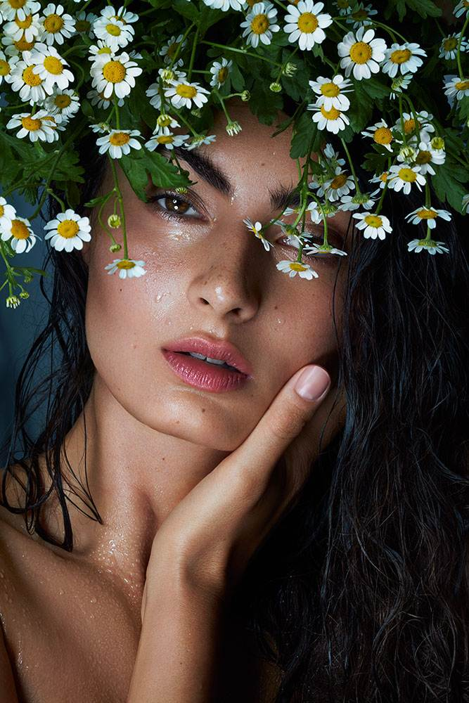 chamomille as the perfect skin care ingredients