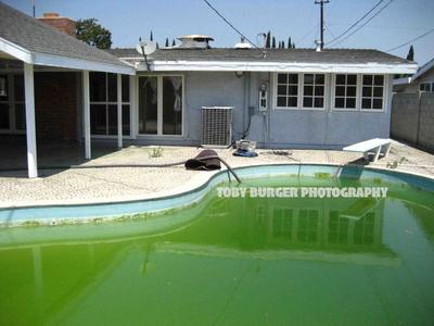 The Green Bean, Orange County.