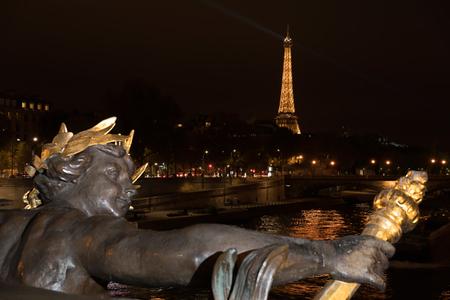 View from Alexandre III Bridge. Paris