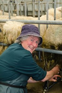 Sheep farmer. New Zealand