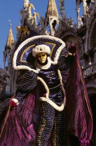 Carnevale reveler. Venice, Italy