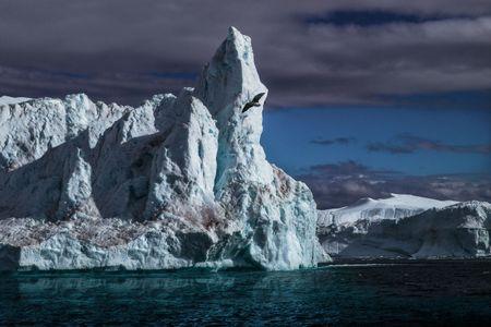 Icefield, Western Greenland