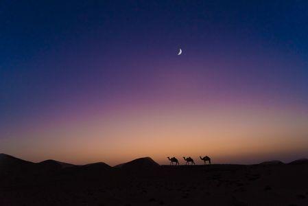 Southern Arabia's Empty Quarter