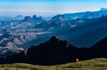 Simeon Mountains, Ethiopia
