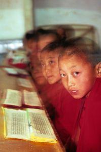 Young Buddhist  monks. Paro, Bhutan