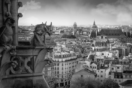 Gargoyles. Notre Dame Cathedral. Paris