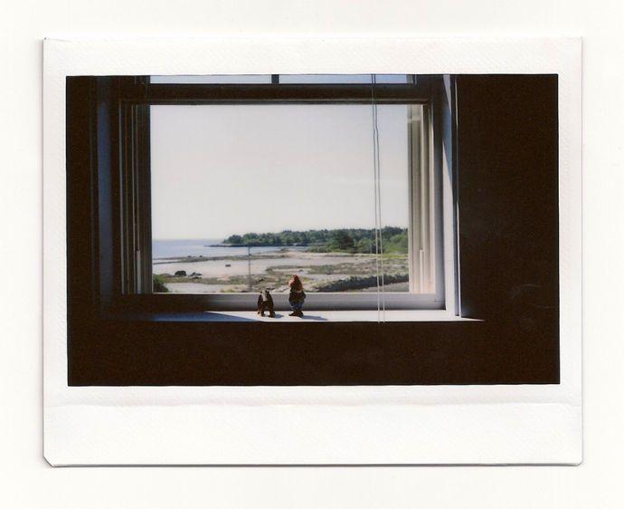 1spruce_head_window_072212_195.jpg