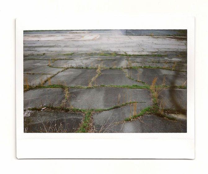 1031812_grassy_lot_74_crop.jpg