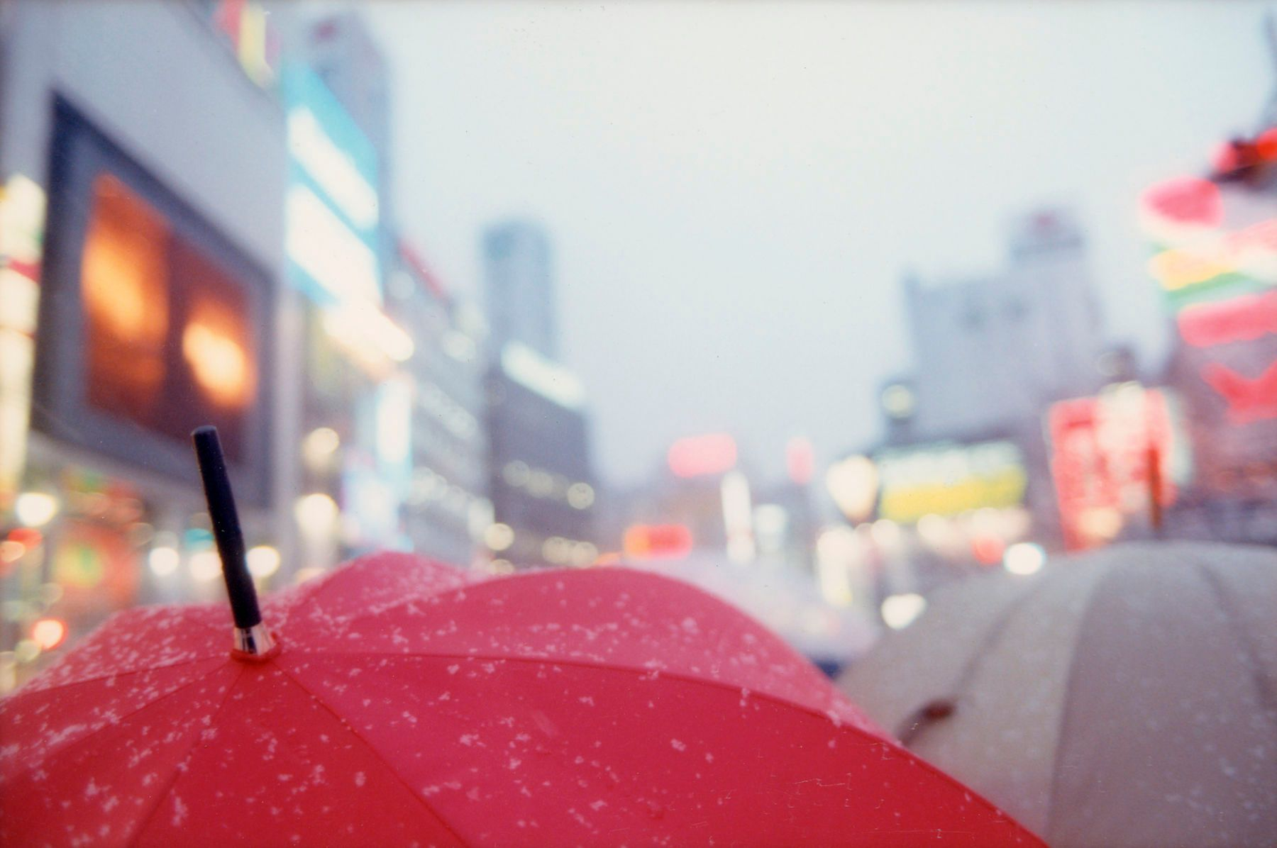 110316112949_1tokyp_red_umbrella.jpg