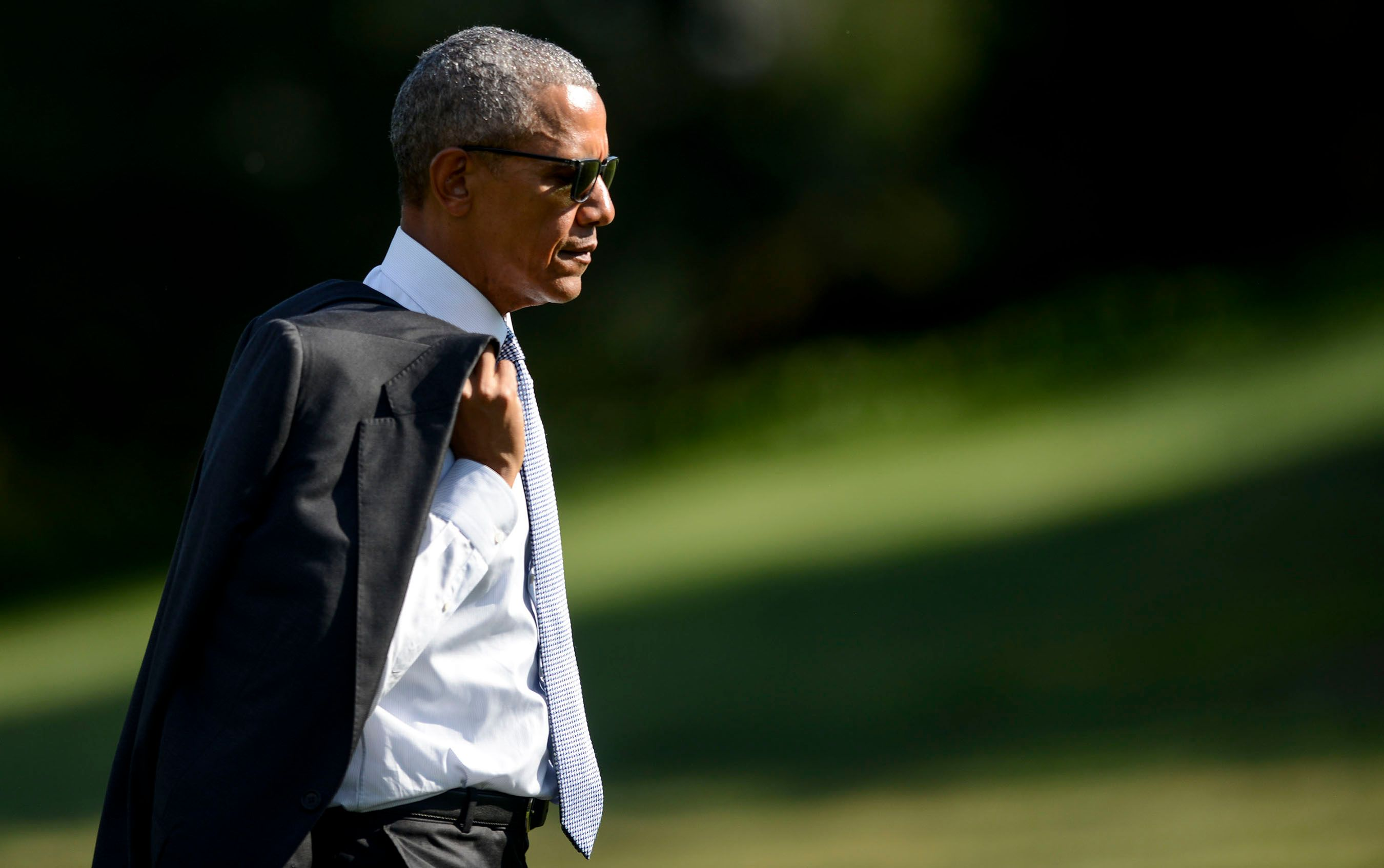 ObamaGreenGrassWeb.jpg
