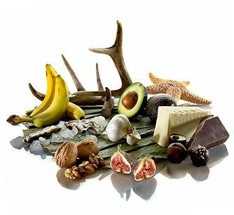 1aphrodesiacfoods_deer_antler_fig_avacado_chocolate_starfish_garlic_walnuts_oysters_banana_banana_leaf_on_refective_white