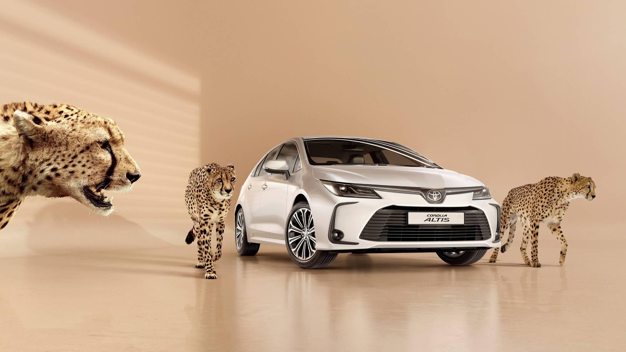 Toyota_0011.jpg