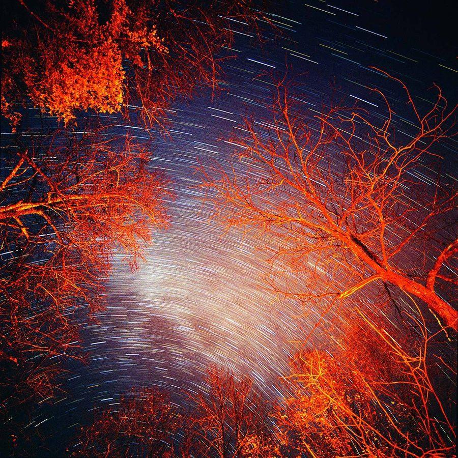 Mid-Night Campfire I