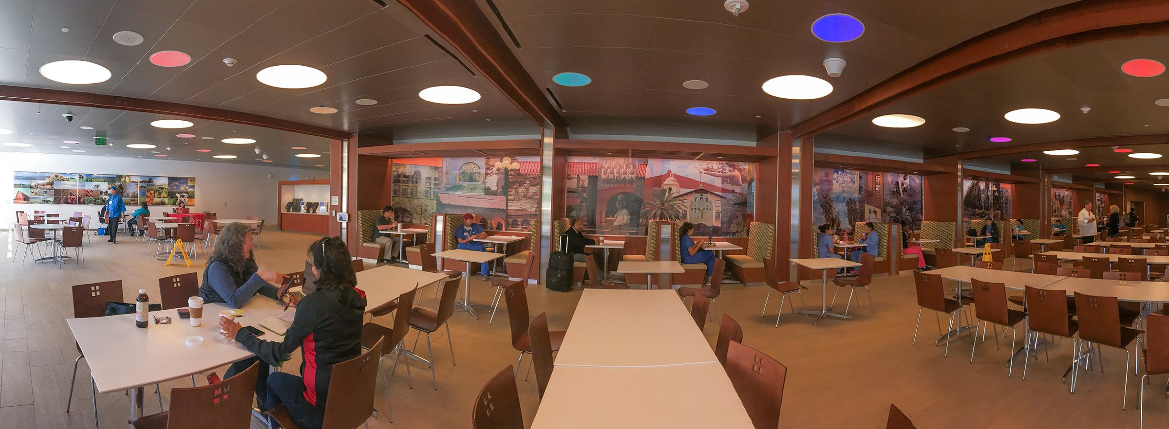 Lucille Packard Children's Hospital Cafeteria- Installation view of two large scale commissioned works