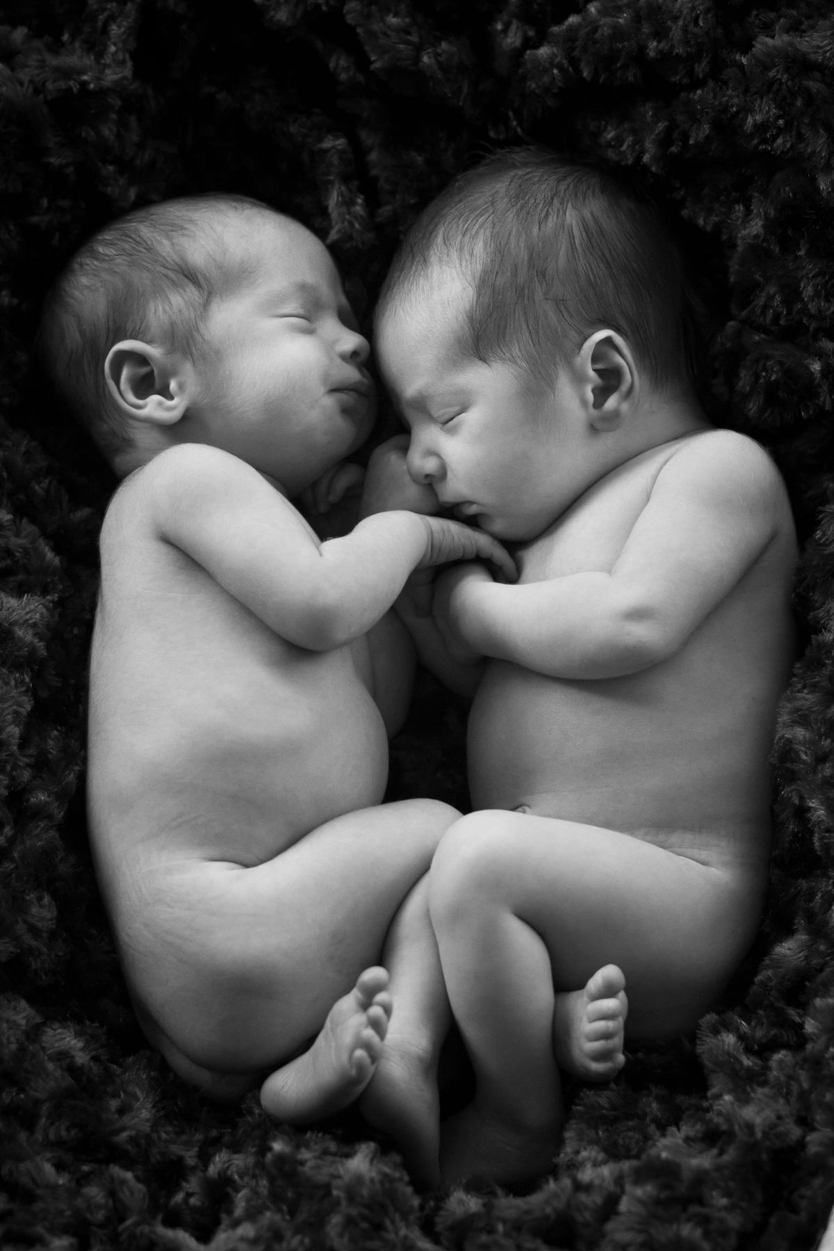 Tucson newborn twin baby photography