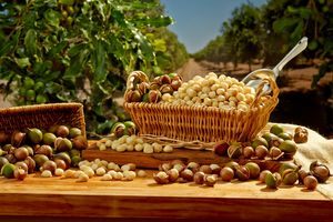 Ric-Noyle-Hawaiian-Host_Macadamia_Nut_Orchid.jpg