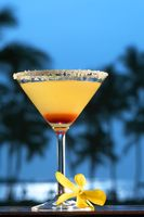 Mauna-Lani-Hotel_coctail time at sunset_Ric-Noyle.jpg
