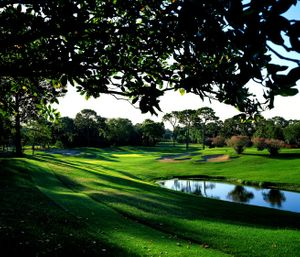 golf course innisbrook by Florida commercial photographer