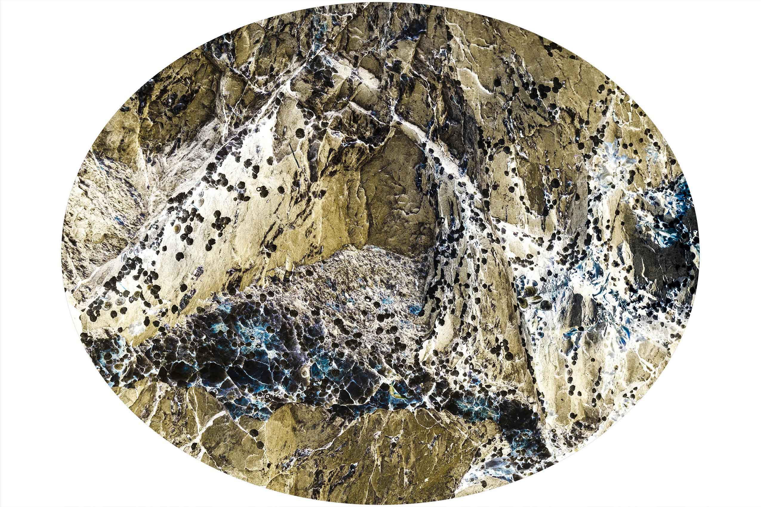 Wilderness OVAL MIRROR-Christin Paige Minnotte-1005 58 x 47 inches SMALL.jpg