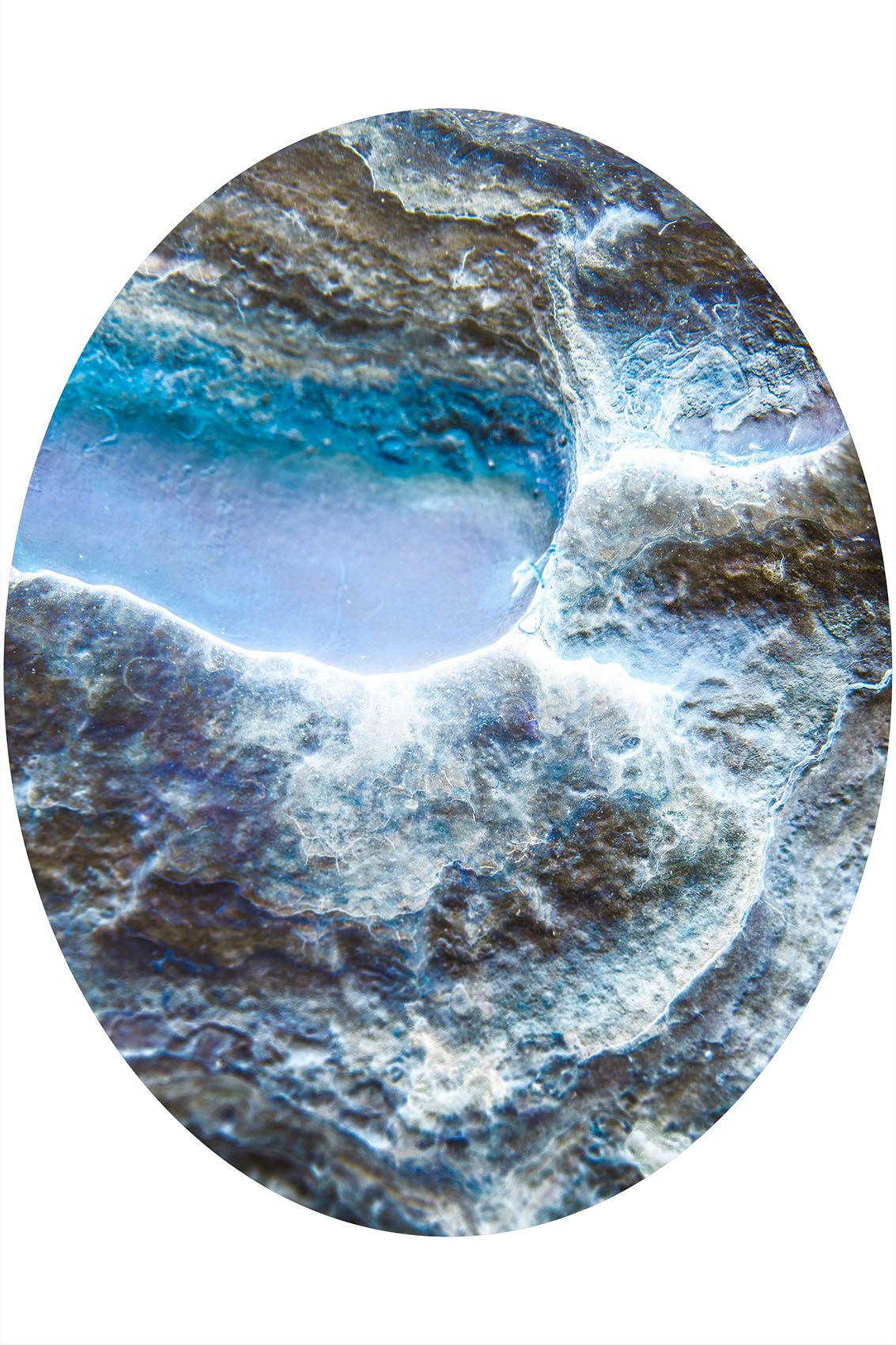Wilderness OVAL MIRROR-Christin Paige Minnotte-1857 46 x 37 inches.jpg