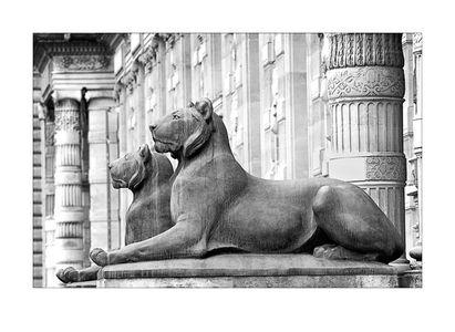 Lions Louvre