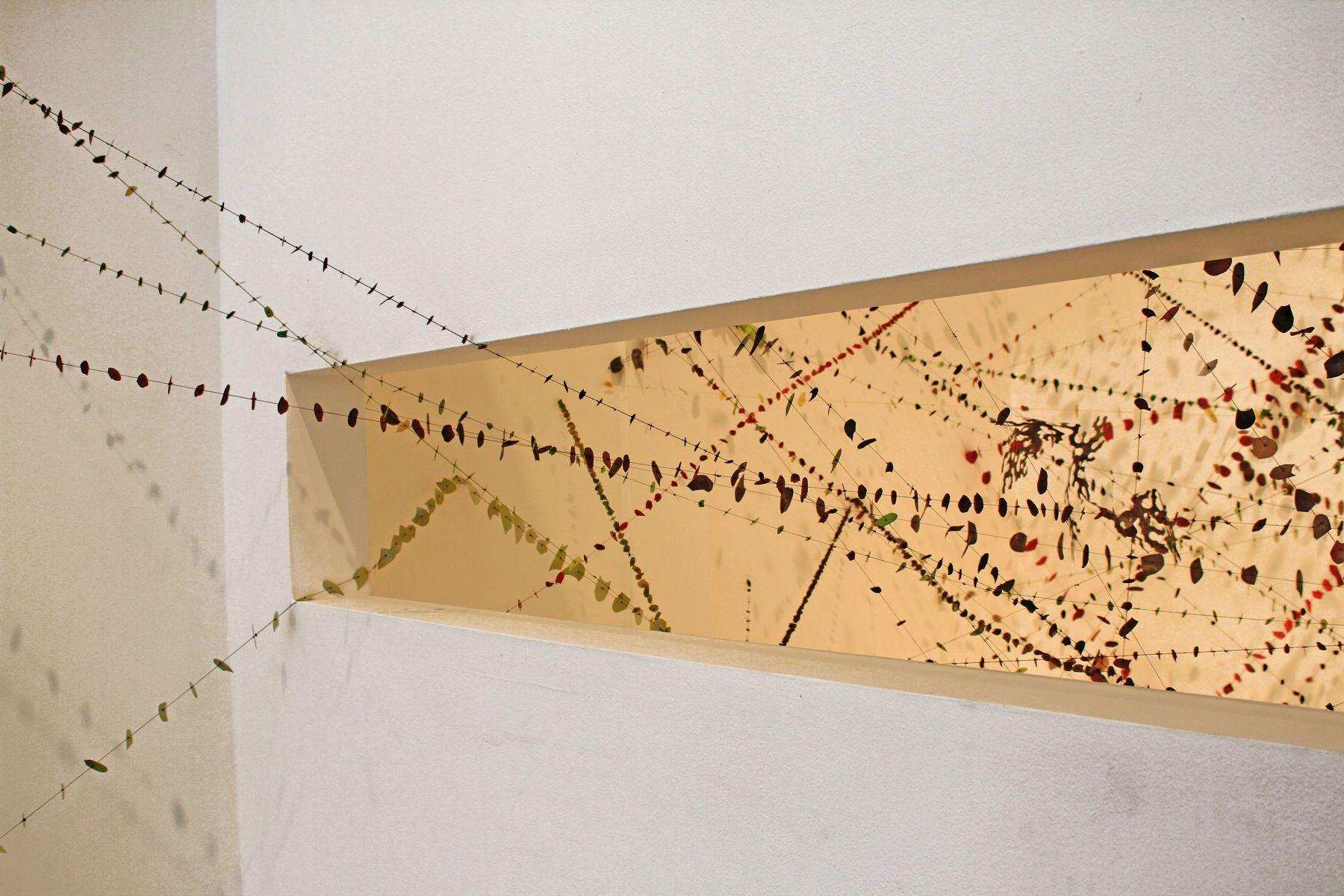 Aranea Constellation