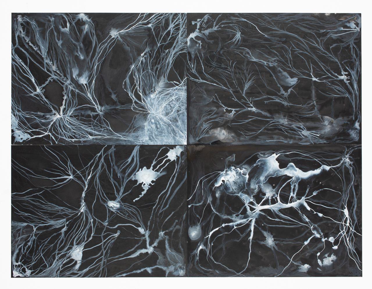 Mycelium set