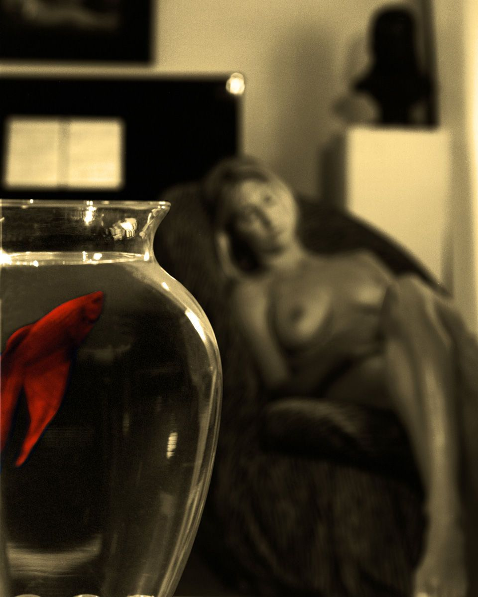 Olympia & Golden fish