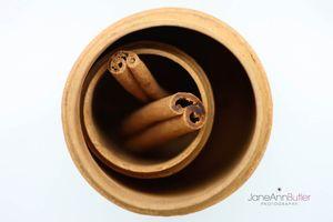 Cinnamon Inside Cinnamon  JABPF025.jpg